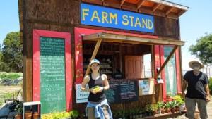 farm-stand2-e1406850698406
