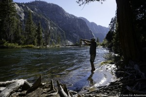 Catch And Release Trout Fishing Tuolumne River Yosemite