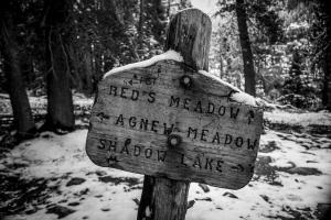 Agnew Meadows